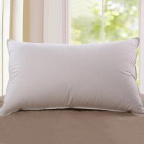 Goose down core pillow
