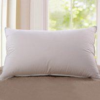 Goose down core pillow